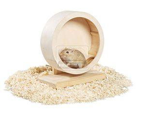AniOne mókuskerék fa 15 cm